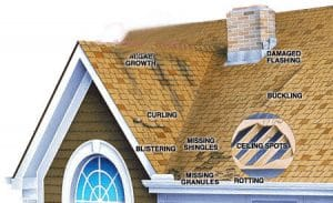 Edmonton-Roofing-Problems